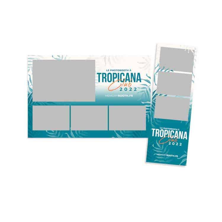 tropical cadre photo 2
